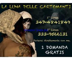 333 95 66 131 La luna delle cartomanti Cartomanzia di strada GRATIS