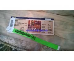 Ligabue RockPark Monza 24 settembre PIT B