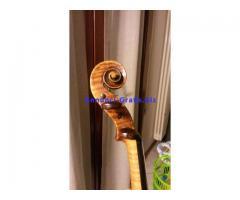 Violino di liuteria