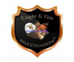 Investigazioni da Eagle Fox & Investigazioni