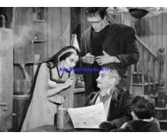 I Mostri(The Munsters) tutta la serie tv completa anni 60 B/N