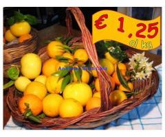 Arance e clementine calabresi a prezzo OK