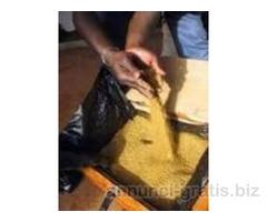 offerta l'oro in polvere 22 carati