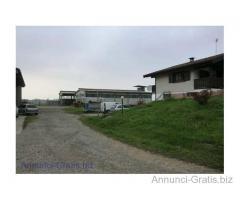 Azienda agricola con stalle e terreni € 650.000