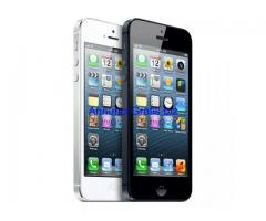 Apple iPhone 5 16gb bianco e nero ingrosso 325€