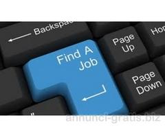 Segretariee 3 Adetti commerciali per ampliamento staff