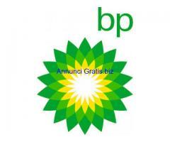 Commercialisti, Salute Sicurezza / Ambiente Ufficiale, Petrolio Ingegnere / Meccanica / Ingegneria e